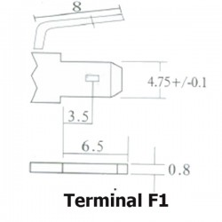 Terminal F1